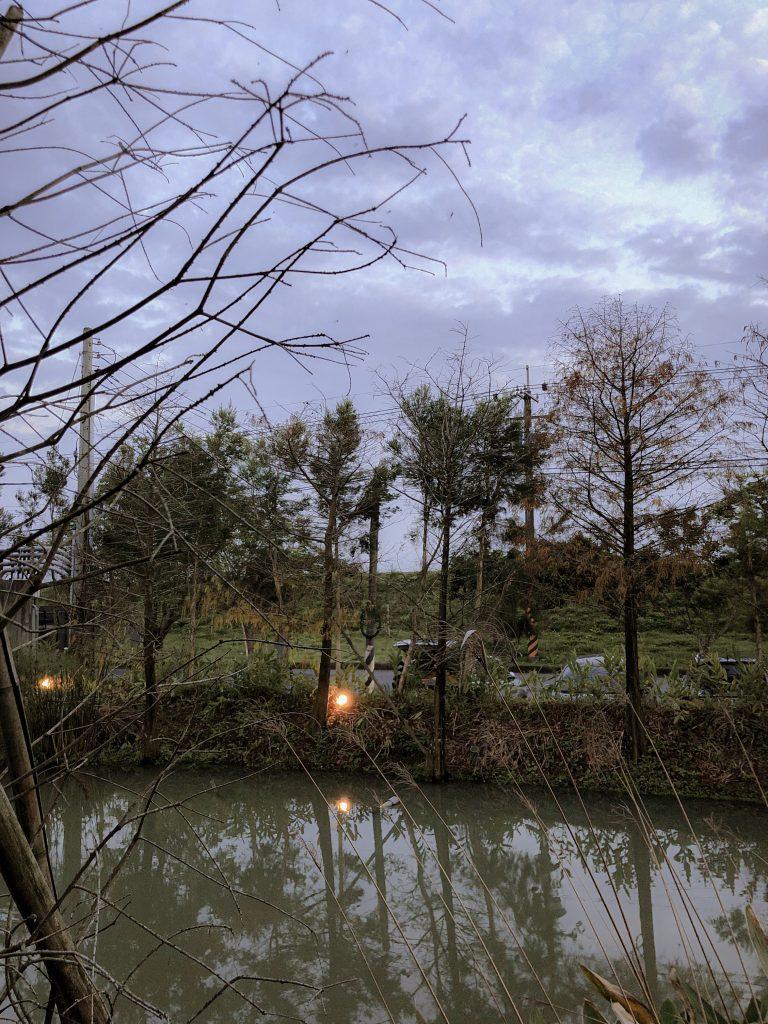 小國生活|夜光森林